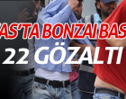 Bonzai baskını;22 gözaltı